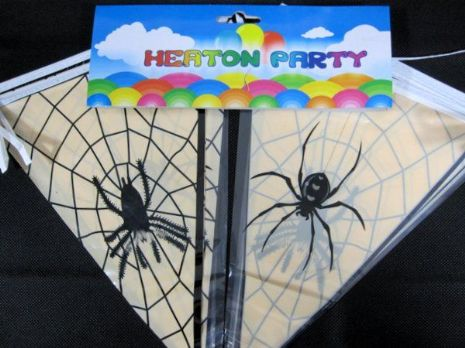 Bunting Spider Design 15 Flags on 6m Halloween Bug Trick Or Treat
